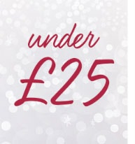 Christmas Under £25